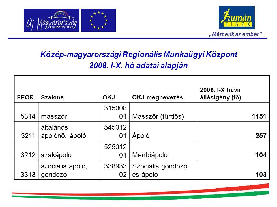 """Közép-magyarországi Regionális Munkaügyi Központ 2008. I-X. hó adatai alapján """"Mércénk az ember"""" FEORSzakmaOKJOKJ megnevezés 2008. I-X havii állásigén"""