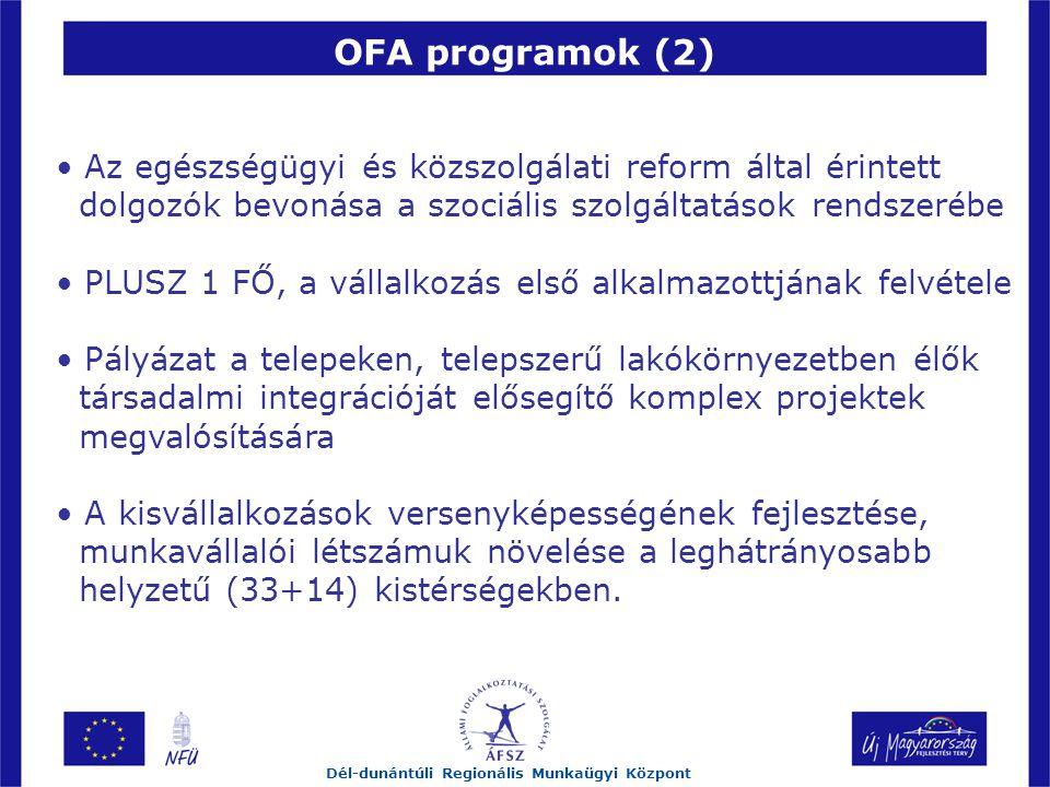 OFA programok (2) Dél-dunántúli Regionális Munkaügyi Központ Az egészségügyi és közszolgálati reform által érintett dolgozók bevonása a szociális szolgáltatások rendszerébe PLUSZ 1 FŐ, a vállalkozás első alkalmazottjának felvétele Pályázat a telepeken, telepszerű lakókörnyezetben élők társadalmi integrációját elősegítő komplex projektek megvalósítására A kisvállalkozások versenyképességének fejlesztése, munkavállalói létszámuk növelése a leghátrányosabb helyzetű (33+14) kistérségekben.