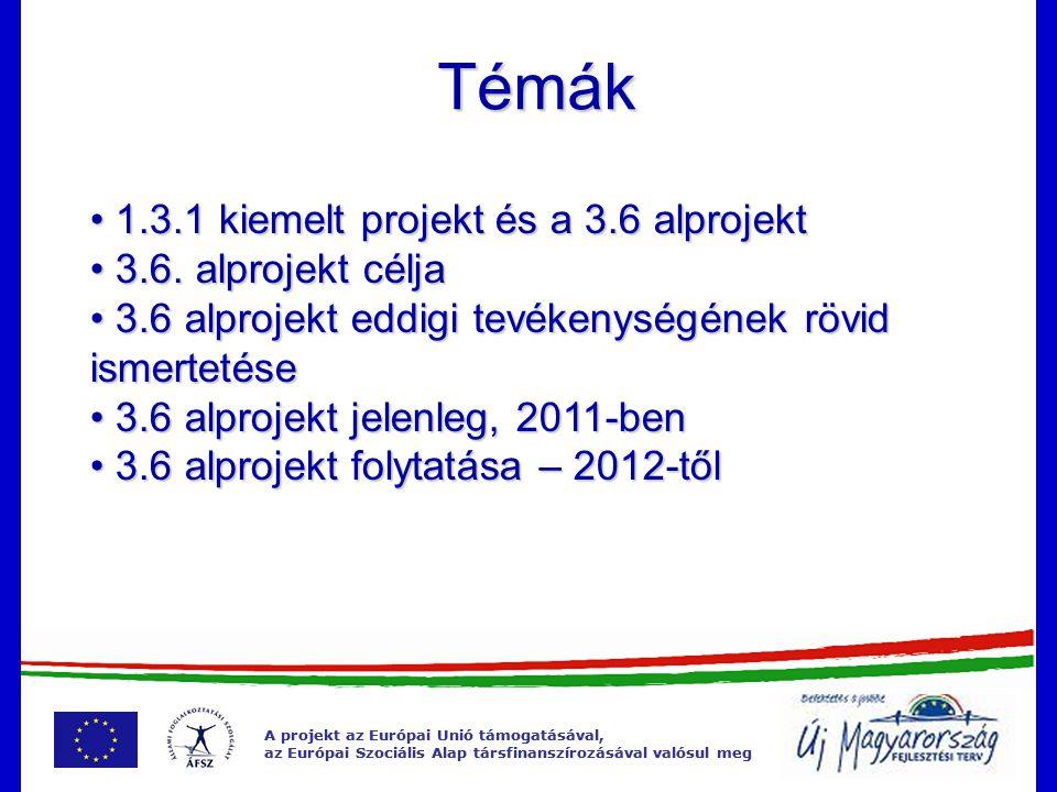 A projekt az Európai Unió támogatásával, az Európai Szociális Alap társfinanszírozásával valósul meg 1.3.1 – 3.6 kapcsolata Szolgáltatásfejlesztés Munkáltatói kapcsolattartás Munkáltatói kapcsolattartás Közvetítés Közvetítés Kutatások Kutatások Stratégia Stratégia Eljárásrendek egységesítése Eljárásrendek egységesítése Munkatanácsadói hálózat Munkatanácsadói hálózat Pályainformációs rendszer korszerűsítése Pályainformációs rendszer korszerűsítése Minőségirányítási rendszer bevezetése Képzés és humánerőforrás fejlesztés (belső) Infrastruktúra fejlesztés Informatikai fejlesztés Integrált rendszer Integrált rendszer Adattárház Adattárház Nemzetközi együttműködések Állásügynök és roma referens pilot