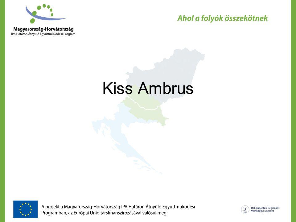 Kiss Ambrus