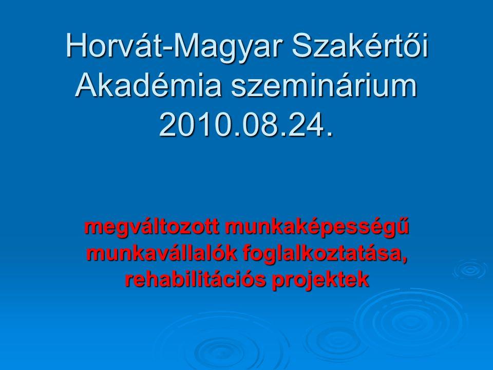 Horvát-Magyar Szakértői Akadémia szeminárium 2010.08.24.
