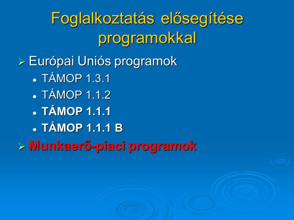 Foglalkoztatás elősegítése programokkal  Európai Uniós programok TÁMOP 1.3.1 TÁMOP 1.3.1 TÁMOP 1.1.2 TÁMOP 1.1.2 TÁMOP 1.1.1 TÁMOP 1.1.1 TÁMOP 1.1.1 B TÁMOP 1.1.1 B  Munkaerő-piaci programok
