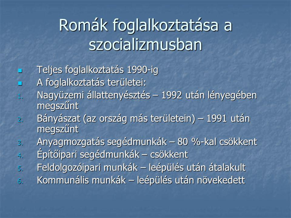Romák foglalkoztatása a szocializmusban Teljes foglalkoztatás 1990-ig Teljes foglalkoztatás 1990-ig A foglalkoztatás területei: A foglalkoztatás területei: 1.