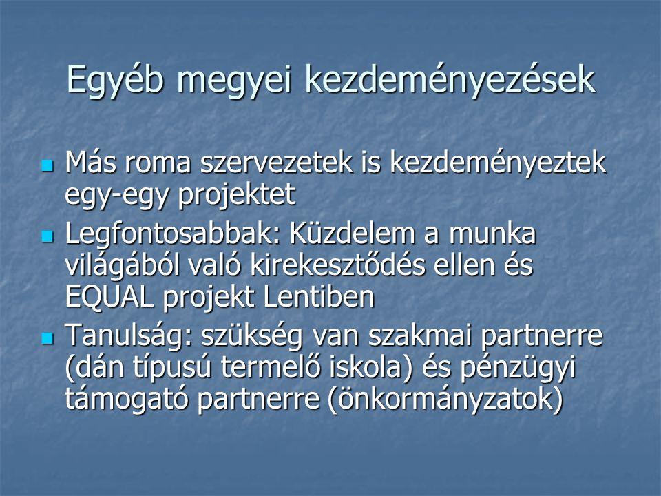 Egyéb megyei kezdeményezések Más roma szervezetek is kezdeményeztek egy-egy projektet Más roma szervezetek is kezdeményeztek egy-egy projektet Legfontosabbak: Küzdelem a munka világából való kirekesztődés ellen és EQUAL projekt Lentiben Legfontosabbak: Küzdelem a munka világából való kirekesztődés ellen és EQUAL projekt Lentiben Tanulság: szükség van szakmai partnerre (dán típusú termelő iskola) és pénzügyi támogató partnerre (önkormányzatok) Tanulság: szükség van szakmai partnerre (dán típusú termelő iskola) és pénzügyi támogató partnerre (önkormányzatok)