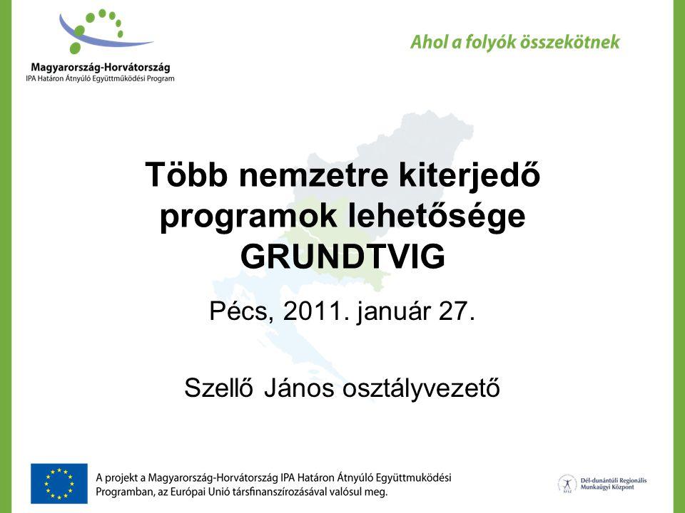 Több nemzetre kiterjedő programok lehetősége GRUNDTVIG Pécs, 2011. január 27. Szellő János osztályvezető