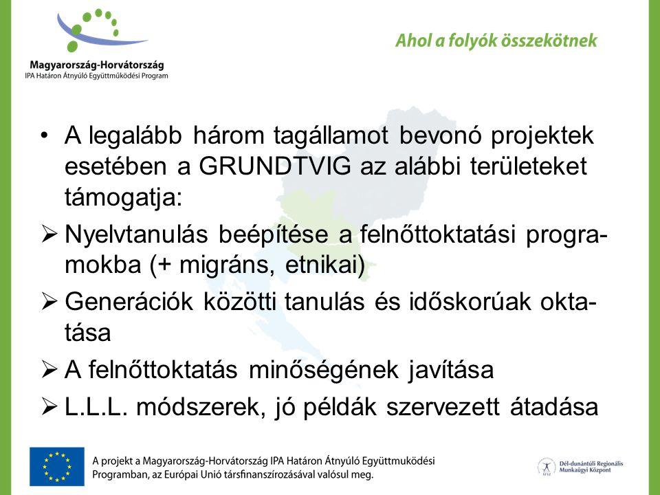 A legalább három tagállamot bevonó projektek esetében a GRUNDTVIG az alábbi területeket támogatja:  Nyelvtanulás beépítése a felnőttoktatási progra-