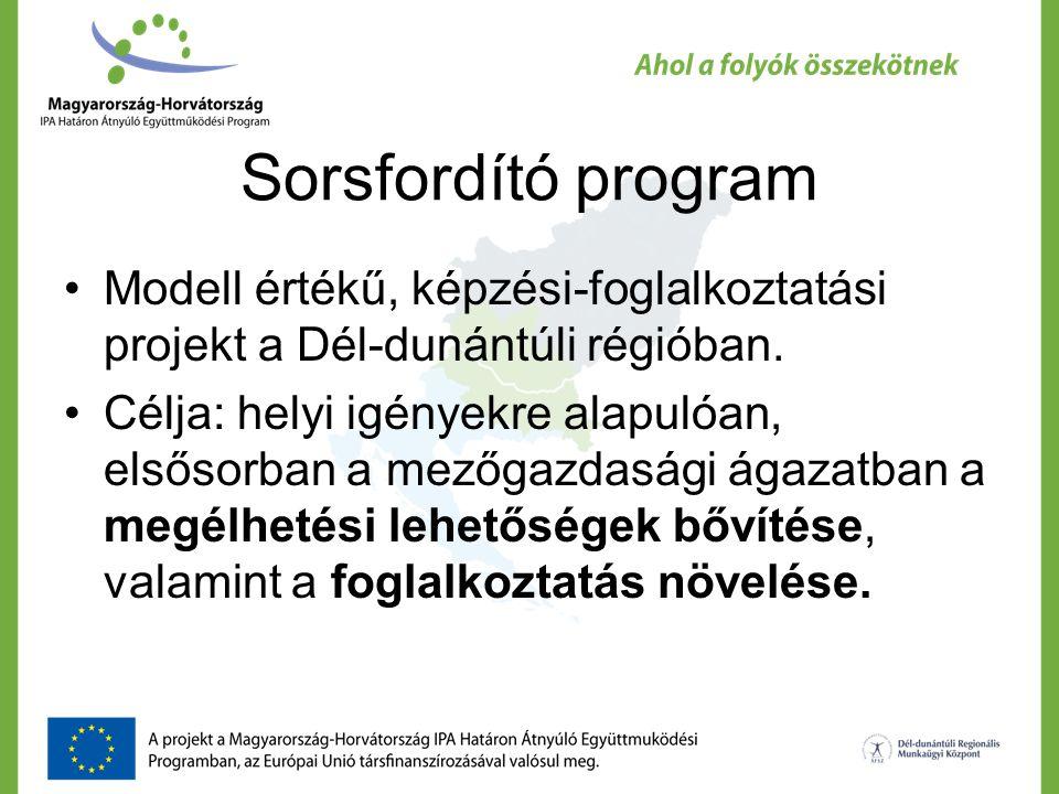Sorsfordító program Modell értékű, képzési-foglalkoztatási projekt a Dél-dunántúli régióban.