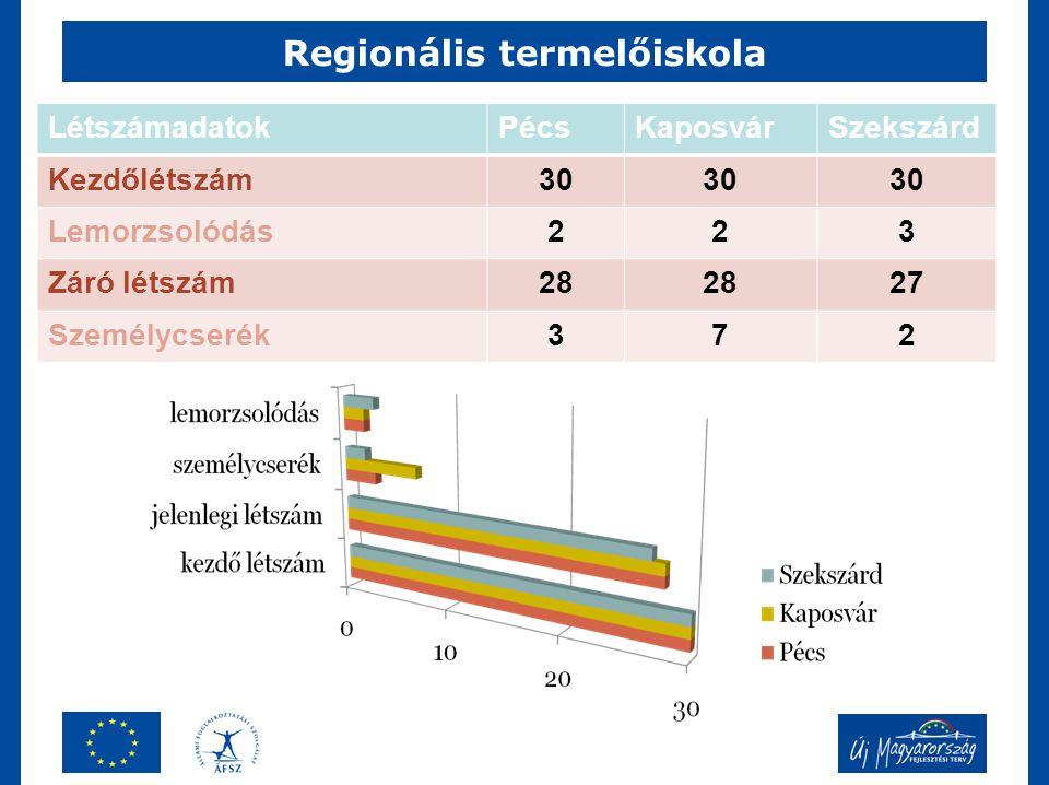 Regionális termelőiskola LétszámadatokPécsKaposvárSzekszárd Kezdőlétszám30 Lemorzsolódás223 Záró létszám28 27 Személycserék372
