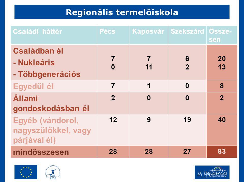 Regionális termelőiskola Családi háttér PécsKaposvárSzekszárdÖssze- sen Családban él - Nukleáris - Többgenerációs 7070 7 11 6262 20 13 Egyedül él 7108