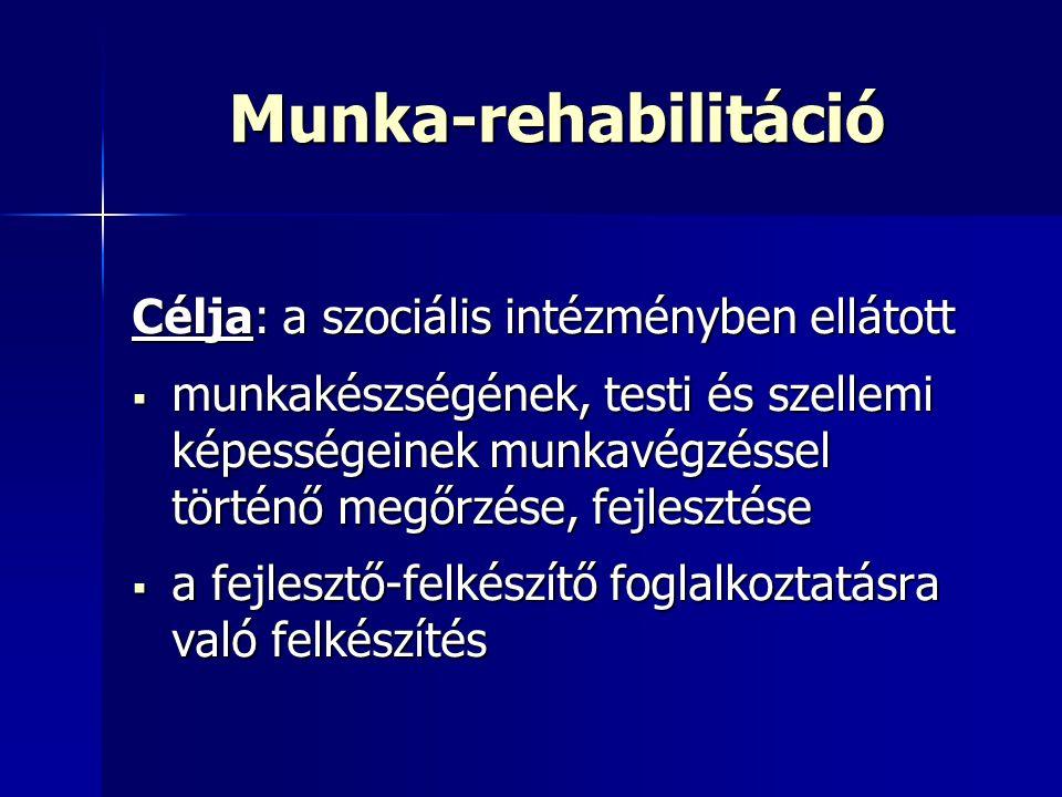 Munka-rehabilitáció Célja: a szociális intézményben ellátott  munkakészségének, testi és szellemi képességeinek munkavégzéssel történő megőrzése, fej