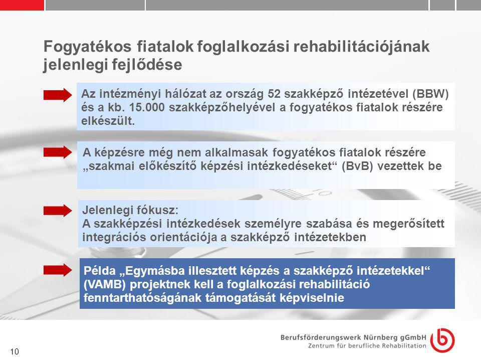 10 Fogyatékos fiatalok foglalkozási rehabilitációjának jelenlegi fejlődése Az intézményi hálózat az ország 52 szakképző intézetével (BBW) és a kb. 15.