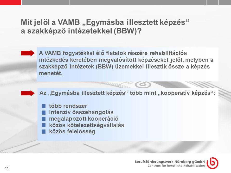 """11 Mit jelöl a VAMB """"Egymásba illesztett képzés"""" a szakképző intézetekkel (BBW)? A VAMB fogyatékkal élő fiatalok részére rehabilitációs intézkedés ker"""