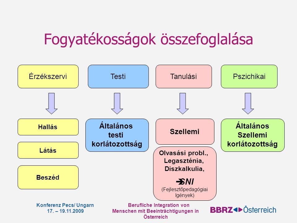 Berufliche Integration von Menschen mit Beeinträchtigungen in Österreich Konferenz Pecs/ Ungarn 17. – 19.11.2009 Fogyatékosságok összefoglalása Érzéks