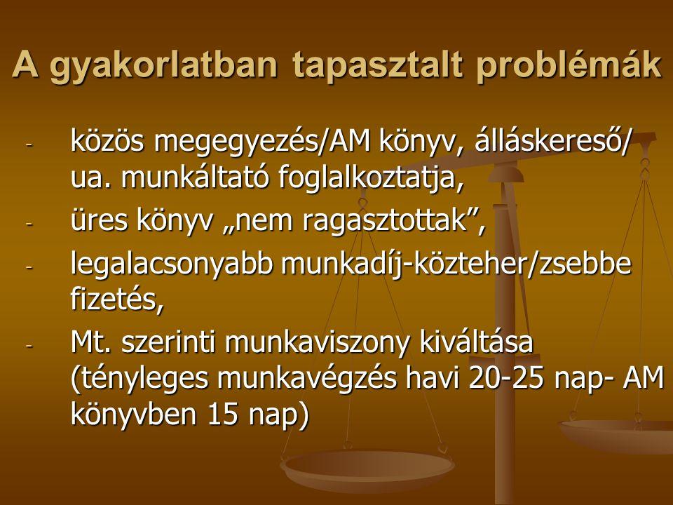 A gyakorlatban tapasztalt problémák - közös megegyezés/AM könyv, álláskereső/ ua.