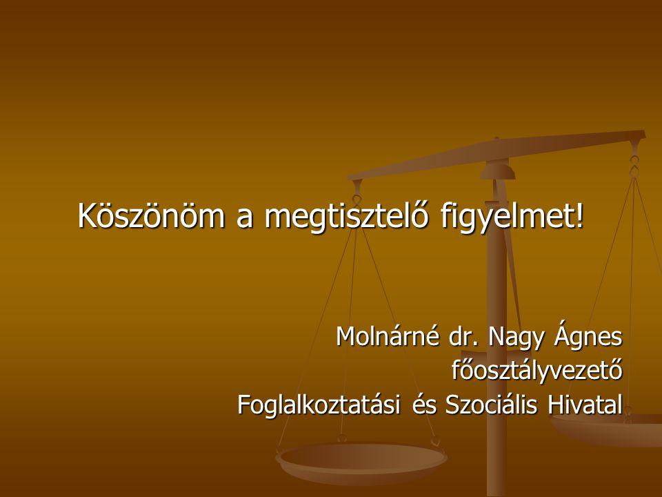 Köszönöm a megtisztelő figyelmet! Molnárné dr. Nagy Ágnes főosztályvezető Foglalkoztatási és Szociális Hivatal