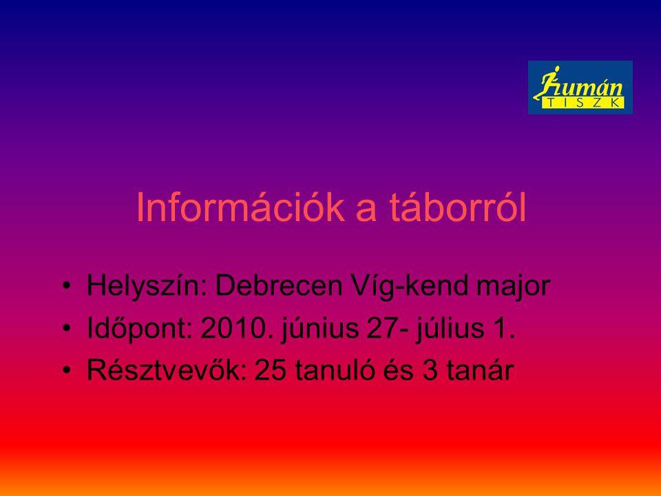 2010. június 27. du. Tájak Európában Készülés az esti közös programra