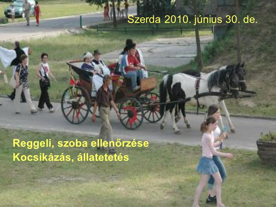 Szerda 2010. június 30. de. Reggeli, szoba ellenőrzése Kocsikázás, állatetetés