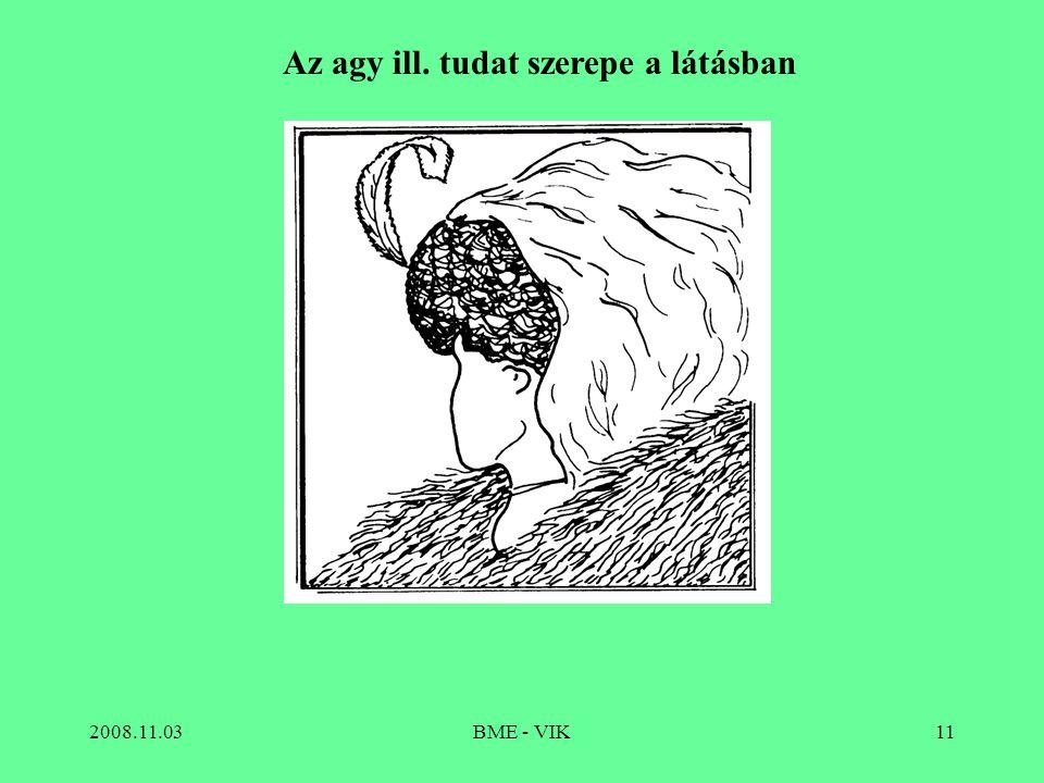2008.11.03BME - VIK11 Az agy ill. tudat szerepe a látásban