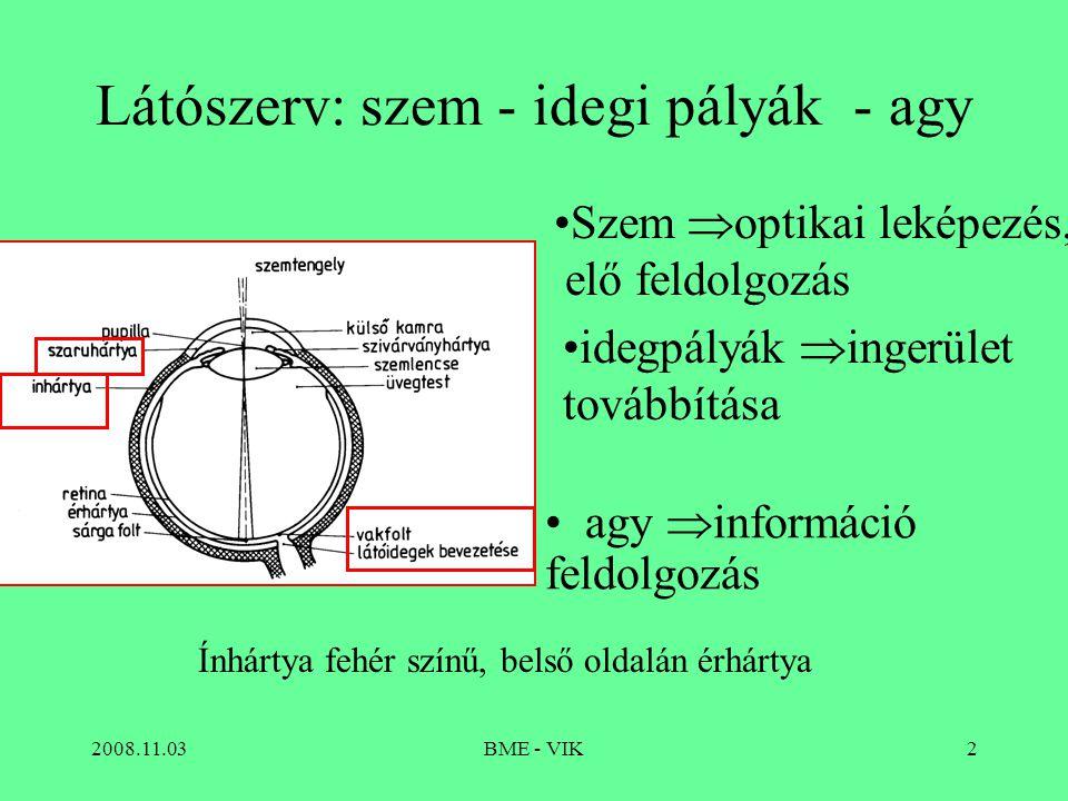2008.11.03BME - VIK2 Látószerv: szem - idegi pályák - agy Szem  optikai leképezés, elő feldolgozás agy  információ feldolgozás idegpályák  ingerület továbbítása Ínhártya fehér színű, belső oldalán érhártya