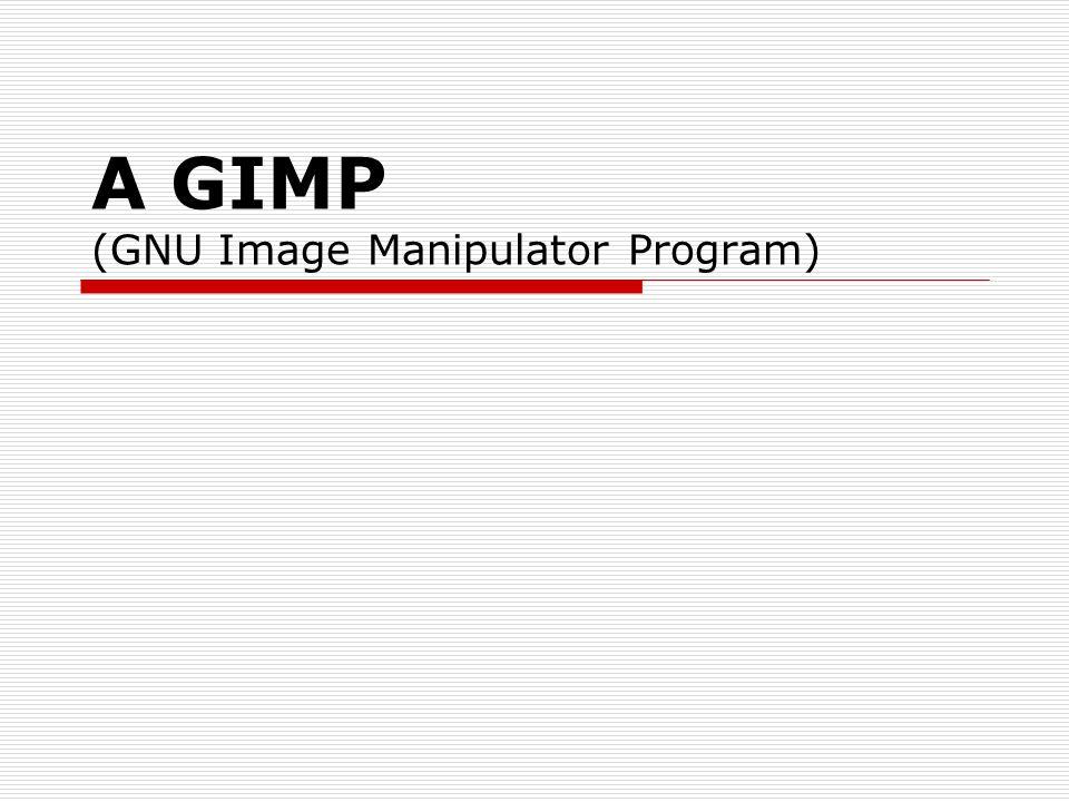 A GIMP (GNU Image Manipulator Program)