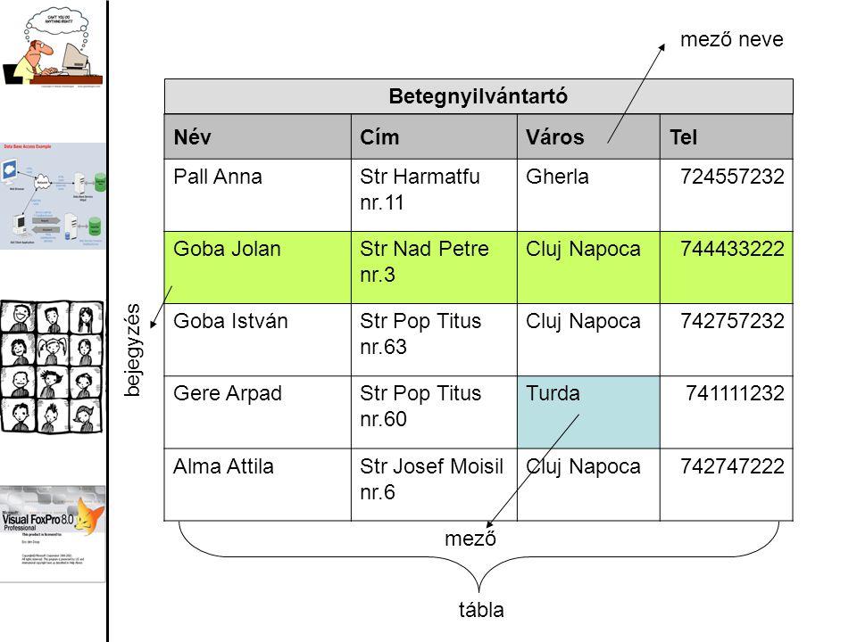 Alapfogalmak: Mező (Field): az egyed egy egységnyi különálló jellemzője –Pd: név vagy telefonszám Kulcs (Key): az a mező amely minden egyedet egyértelműen azonosít –Pd: személyiszám, termékkód Bejegyzés (Record): az egyedet leíró összetartozó mezők –Pd: egy adott személyhez tartozó adatok (név, lakcím, telefonszám) Tábla (Table): több azonos szerkezetű bejegyzés –Pd: egy táblában tárolhatjuk egy csoporthoz tartozó személyek neveit