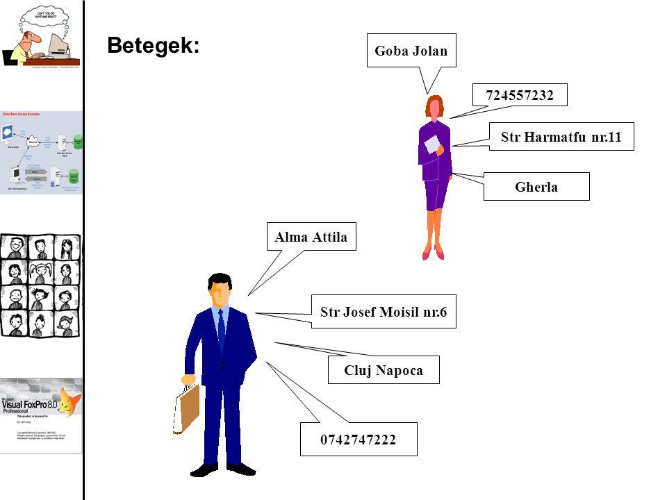 724557232 Goba Jolan Str Harmatfu nr.11 Str Josef Moisil nr.6 Alma Attila Cluj Napoca Gherla 0742747222 Betegek: