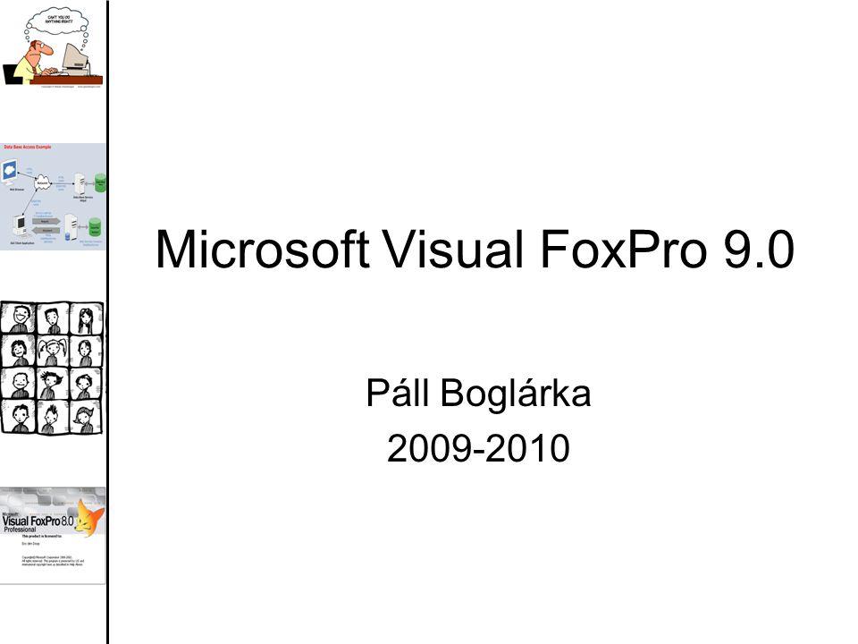 Microsoft Visual FoxPro 9.0 Páll Boglárka 2009-2010