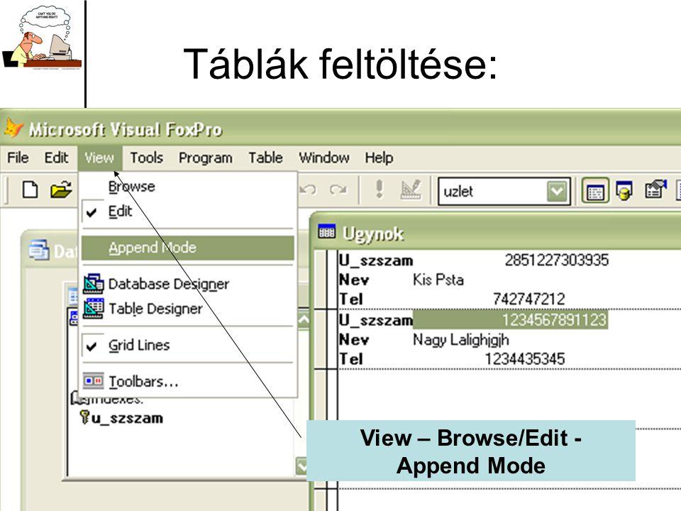 Táblák feltöltése: View – Browse/Edit - Append Mode