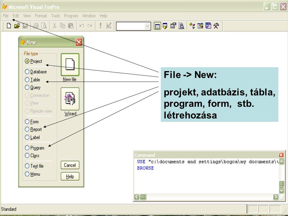File -> New: projekt, adatbázis, tábla, program, form, stb. létrehozása