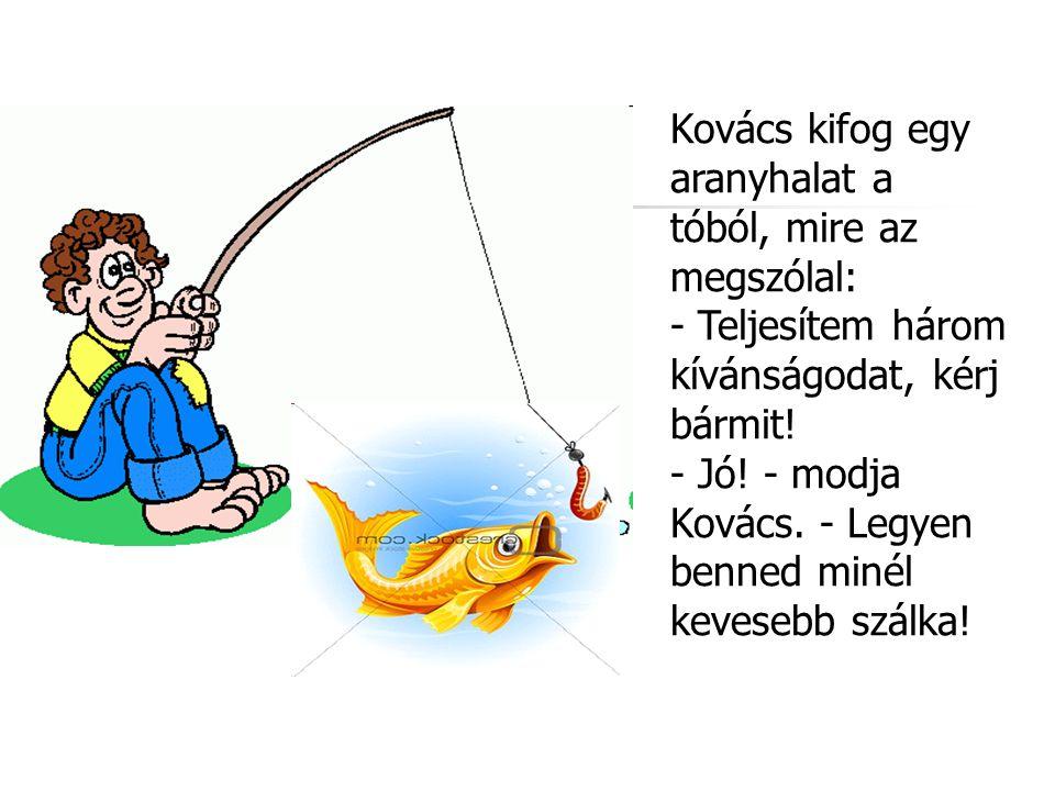 Kovács kifog egy aranyhalat a tóból, mire az megszólal: - Teljesítem három kívánságodat, kérj bármit! - Jó! - modja Kovács. - Legyen benned minél keve