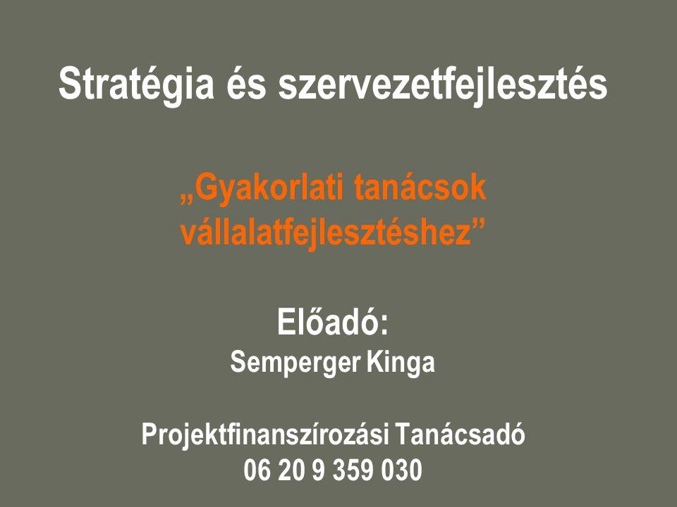 """Stratégia és szervezetfejlesztés """"Gyakorlati tanácsok vállalatfejlesztéshez"""" Előadó: Semperger Kinga Projektfinanszírozási Tanácsadó 06 20 9 359 030"""