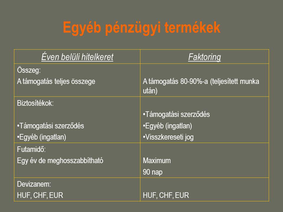Egyéb pénzügyi termékek Éven belüli hitelkeretFaktoring Összeg: A támogatás teljes összegeA támogatás 80-90%-a (teljesített munka után) Biztosítékok: