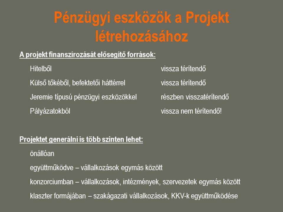 Pénzügyi eszközök a Projekt létrehozásához A projekt finanszírozását elősegítő források: Hitelből vissza térítendő Külső tőkéből, befektetői háttérrel