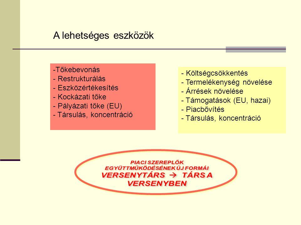A lehetséges eszközök -Tőkebevonás - Restrukturálás - Eszközértékesítés - Kockázati tőke - Pályázati tőke (EU) - Társulás, koncentráció - Költségcsökkentés - Termelékenység növelése - Árrések növelése - Támogatások (EU, hazai) - Piacbővítés - Társulás, koncentráció
