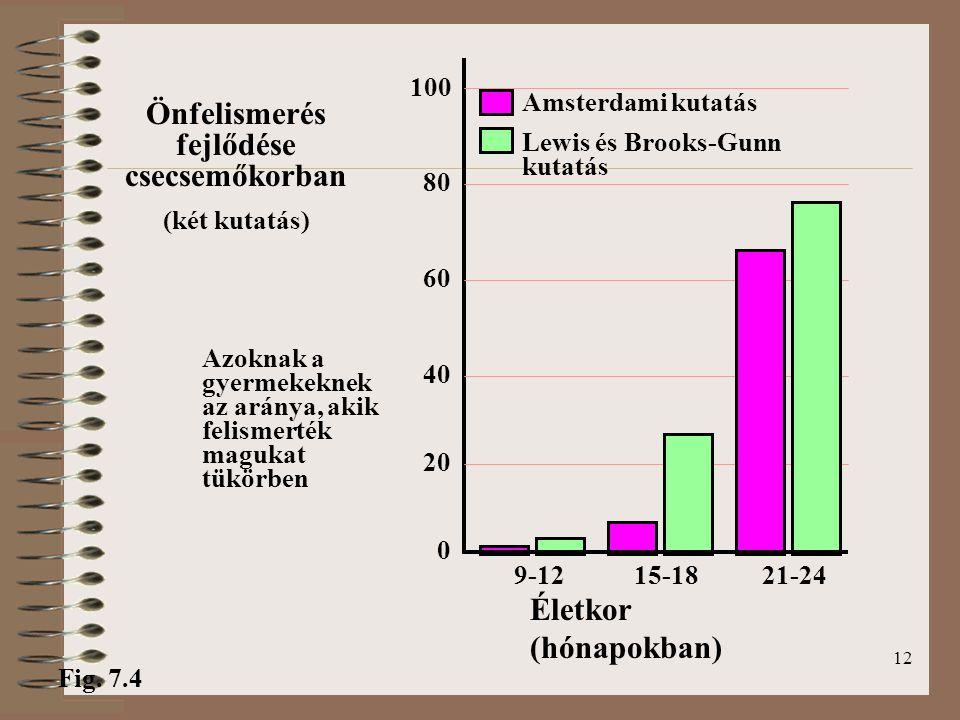 12 Amsterdami kutatás Lewis és Brooks-Gunn kutatás Önfelismerés fejlődése csecsemőkorban (két kutatás) Azoknak a gyermekeknek az aránya, akik felismerték magukat tükörben 0 Életkor (hónapokban) 21-249-1215-18 Fig.