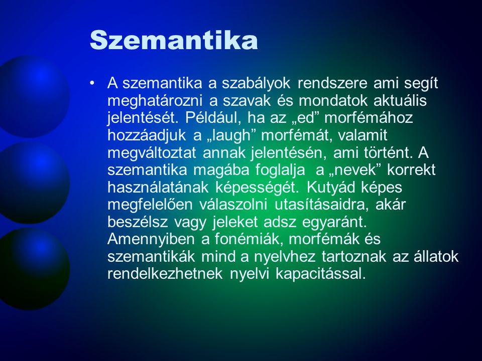 """Szemantika A szemantika a szabályok rendszere ami segít meghatározni a szavak és mondatok aktuális jelentését. Például, ha az """"ed"""" morfémához hozzáadj"""