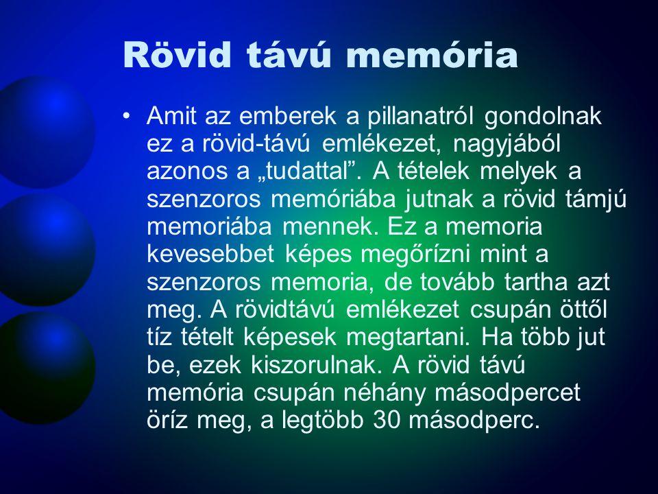 """Rövid távú memória Amit az emberek a pillanatról gondolnak ez a rövid-távú emlékezet, nagyjából azonos a """"tudattal"""". A tételek melyek a szenzoros memó"""