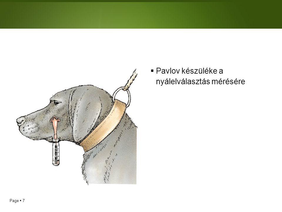 Page  8 Klasszikus kondicionálás  Az emberek, miként az állatok, képesek klasszikus kondicionálással tanulni.
