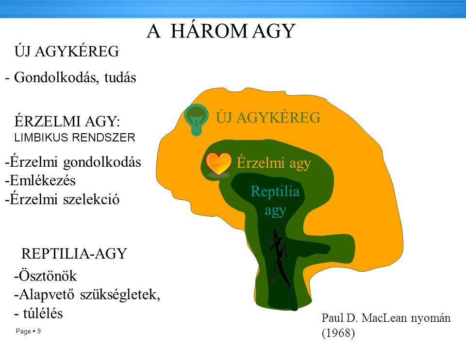 Page  9 Reptilia agy Érzelmi agy ÚJ AGYKÉREG A HÁROM AGY ÚJ AGYKÉREG - Gondolkodás, tudás ÉRZELMI AGY: LIMBIKUS RENDSZER -Érzelmi gondolkodás -Emlékezés -Érzelmi szelekció Paul D.
