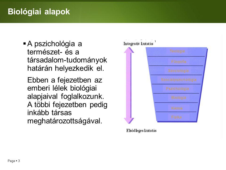 Page  24 Spirituális pszichológia  Néhányan vonakodnak attól, hogy az embereket összehasonlítsuk Istennel.