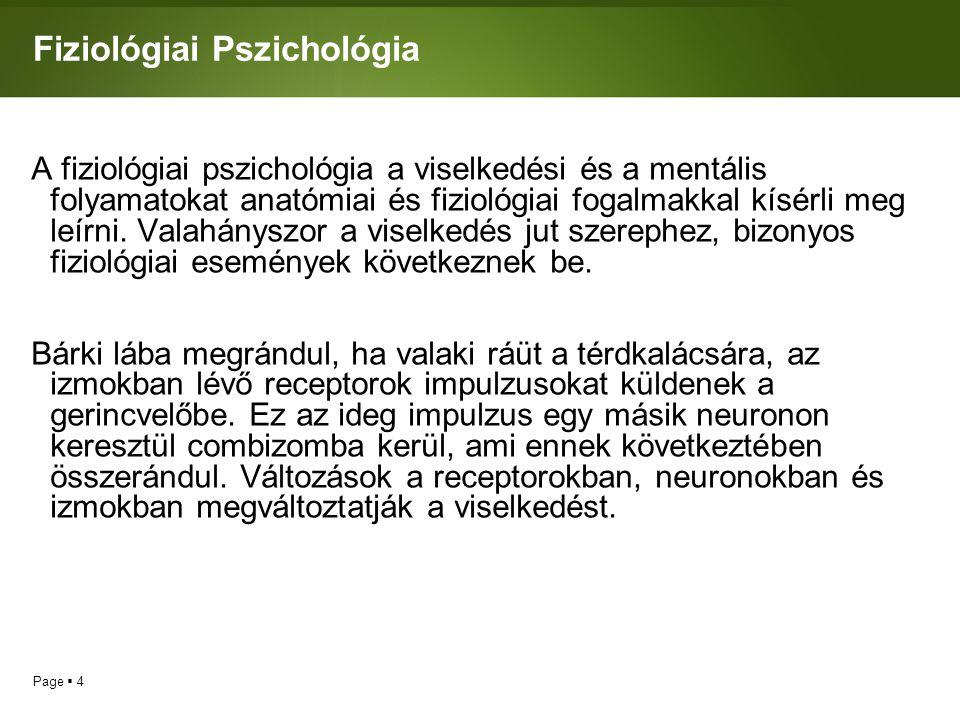 Page  4 Fiziológiai Pszichológia A fiziológiai pszichológia a viselkedési és a mentális folyamatokat anatómiai és fiziológiai fogalmakkal kísérli meg leírni.