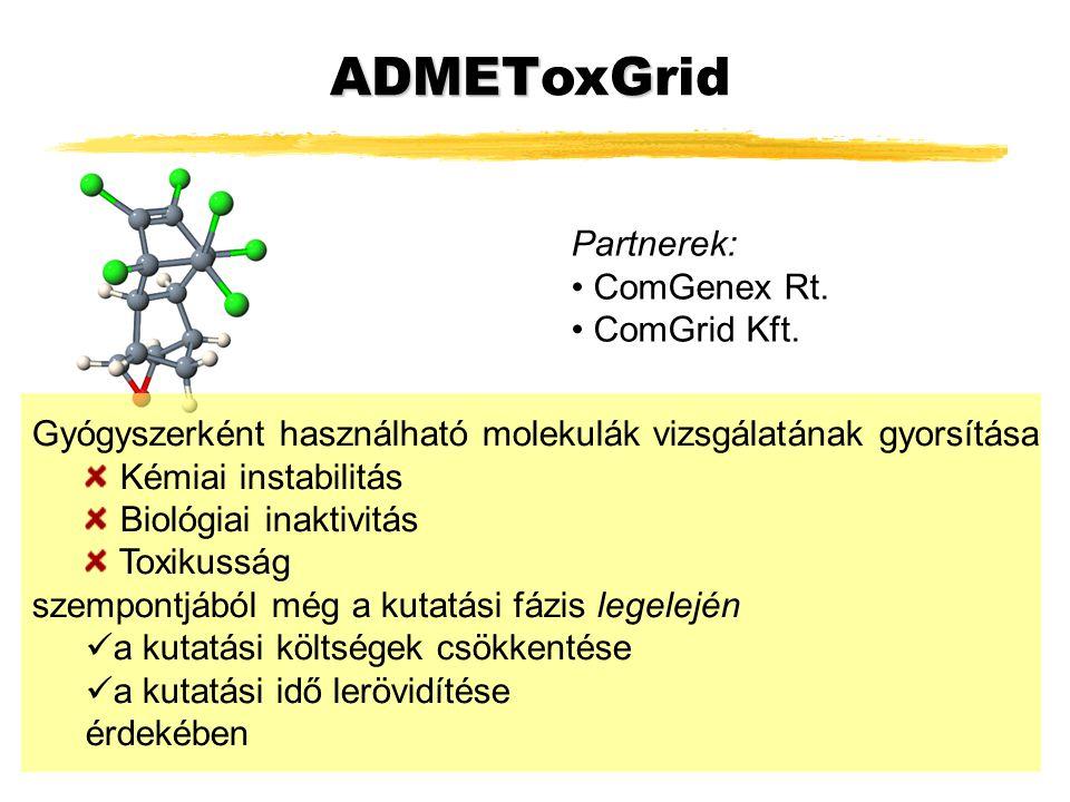 ADMETG ADMEToxGrid Partnerek: ComGenex Rt. ComGrid Kft.