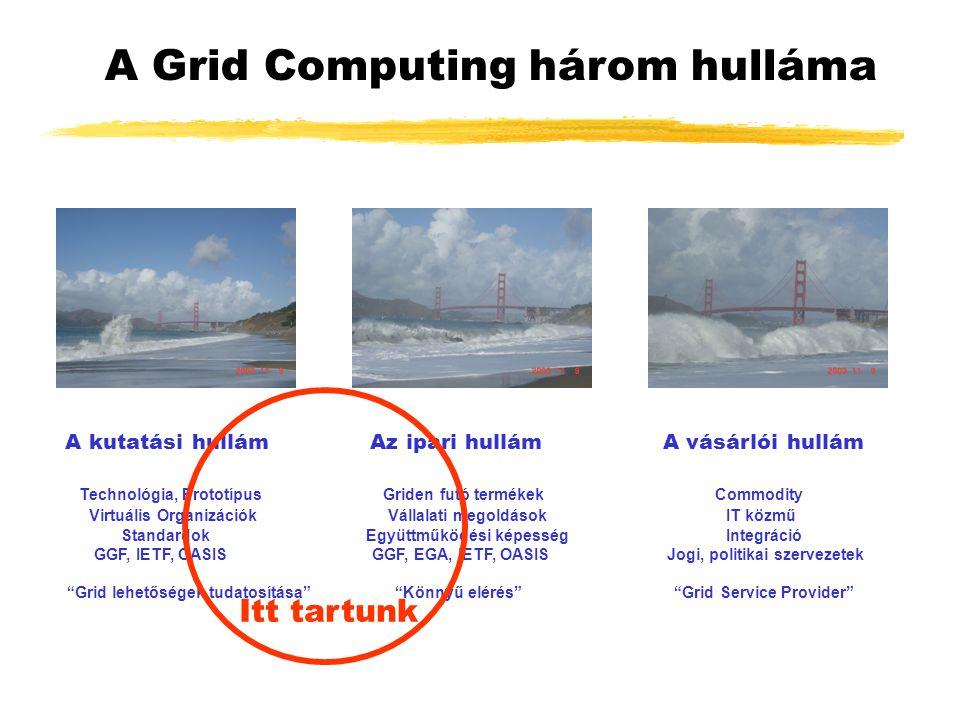 A Grid Computing három hulláma A kutatási hullám Az ipari hullám A vásárlói hullám Technológia, Prototípus Griden futó termékek Commodity Virtuális Organizációk Vállalati megoldások IT közmű Standardok Együttműködési képesség Integráció GGF, IETF, OASIS GGF, EGA, IETF, OASIS Jogi, politikai szervezetek Grid lehetőségek tudatosítása Könnyű elérés Grid Service Provider Itt tartunk