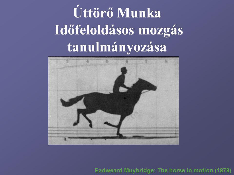 Úttörő Munka Időfeloldásos mozgás tanulmányozása Eadweard Muybridge: The horse in motion (1878)