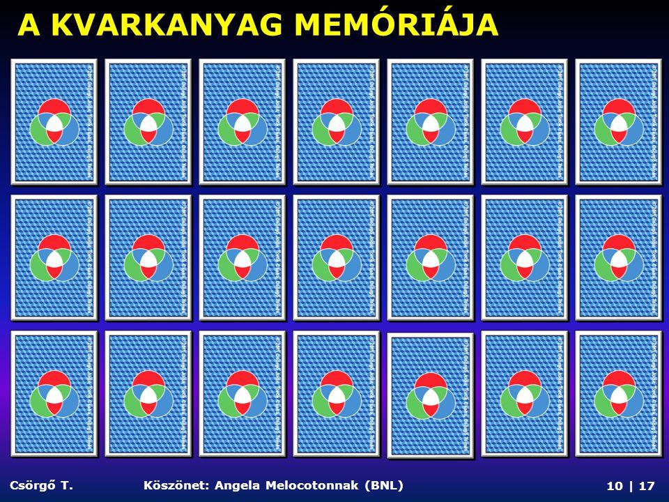 A KVARKANYAG MEMÓRIÁJA 10 | 17 Csörgő T.Köszönet: Angela Melocotonnak (BNL)