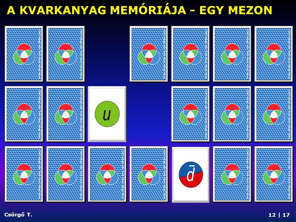 12 | 17 Csörgő T. A KVARKANYAG MEMÓRIÁJA - EGY MEZON
