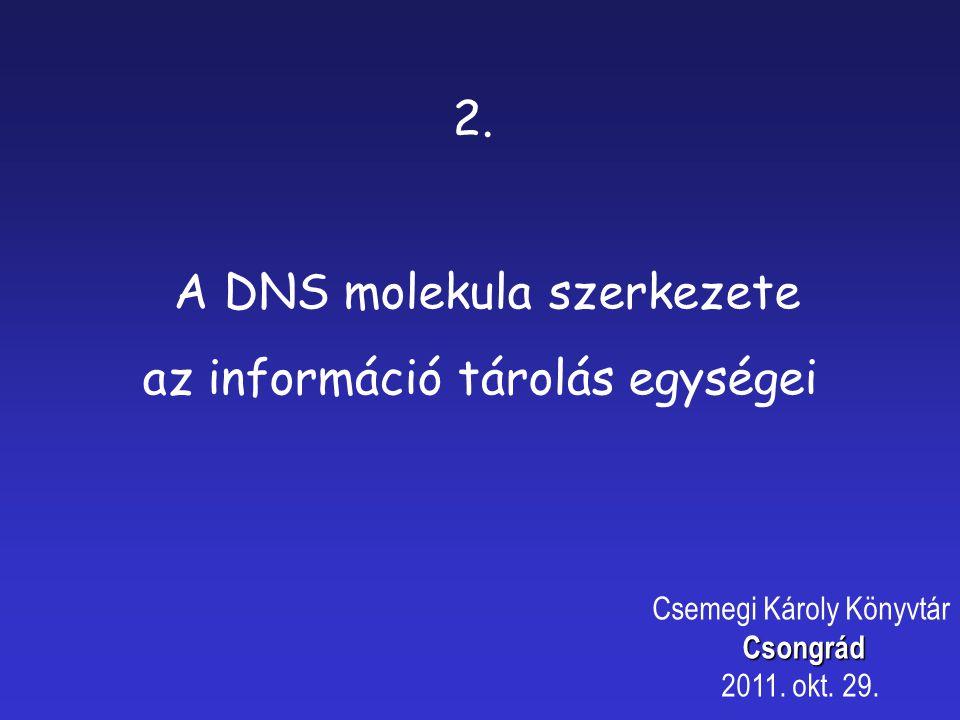 3. Hangsúly áthelyezések Csemegi Károly KönyvtárCsongrád 2011. okt. 29.