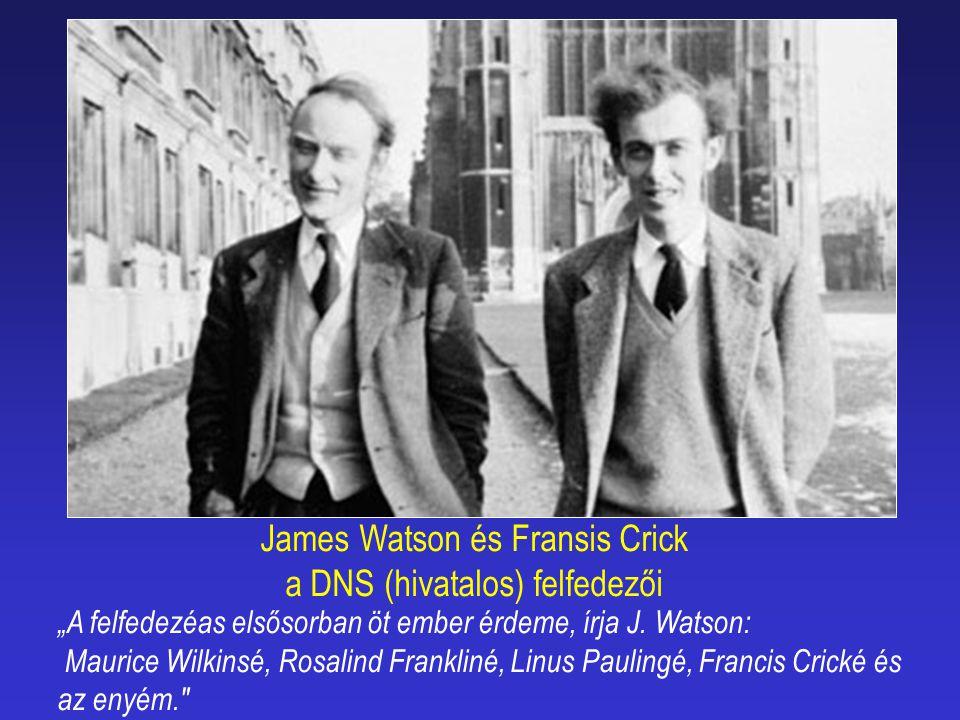 Watsont, Cricket, és Wilkinst 1962-ben orvosi Nobel-díjjal jutalmazták a DNS szerkezetének felfedezéséért