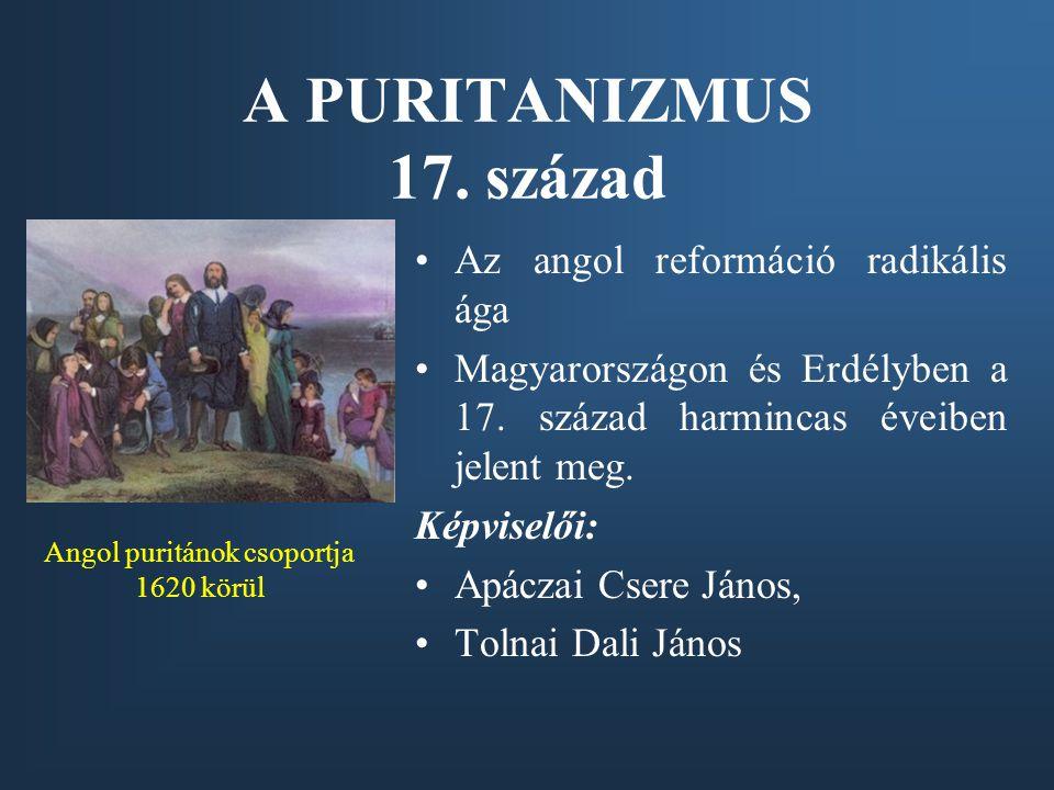TOLNAI DALI JÁNOS (1606-1660) Működése Sárospatakon Törekvései a felnőttképzés terén Lorántffy Zsuzsanna