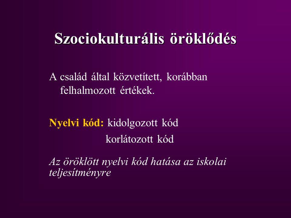 Szociokulturális öröklődés A család által közvetített, korábban felhalmozott értékek.